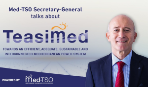 A comprehensive glimpse into Med-TSO's latest project, TEASIMED, with Secretary-General Angelo Ferrante